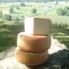 fromage de brebis